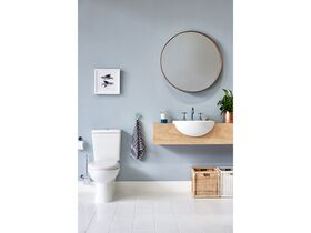 Posh Solus Close Coupled Back to Wall Toilet Suite S&P Trap with Soft Close Quick Release Seat White/ Chrome (4 Star)
